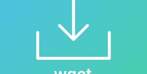 如何在wget中跳过SSL证书检查