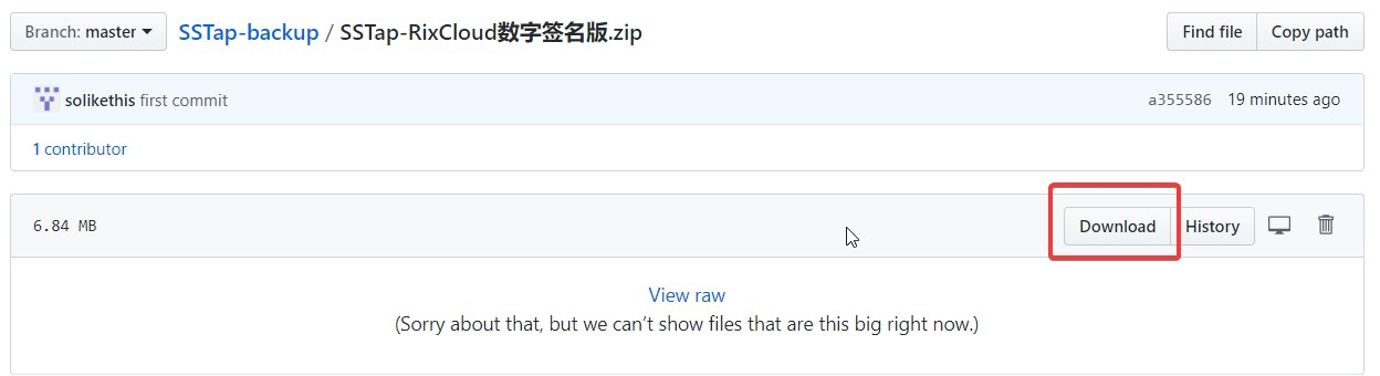 Windows - SSTap 使用教程