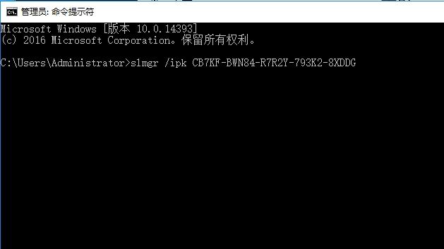 粘贴在服务器上的命令提示符窗口内